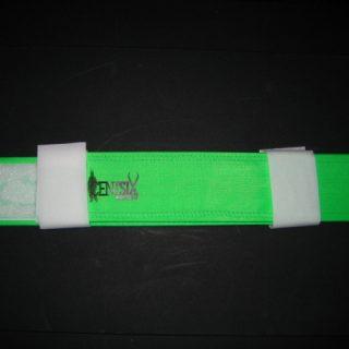 Foot Strap Vert centsix
